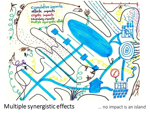 synergistic impacts