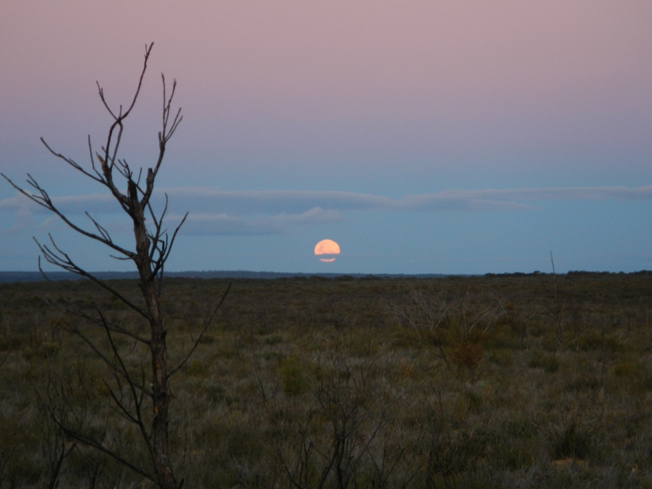Moonrise almost as old as the moon fresh as the last burn