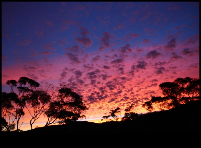 Sunrise over Helena-Aurora. Photograph by Fiona Westcott (reproduced with permission)