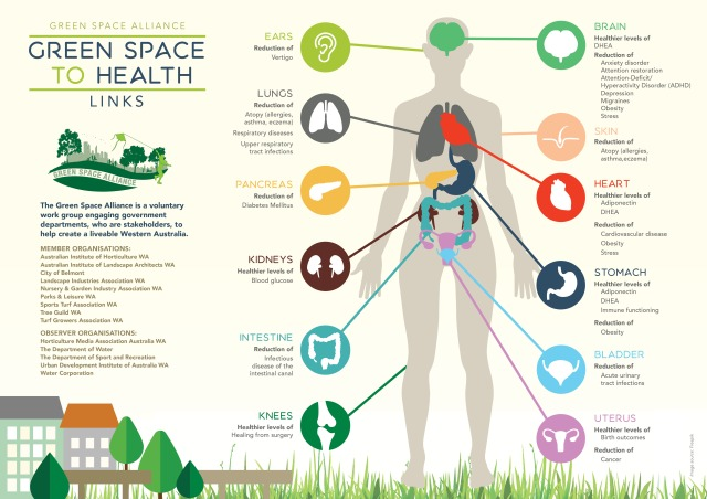 a3-health-infographicv2-landscape